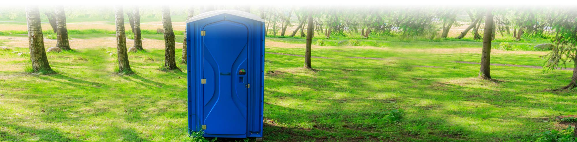 Blue Porta Potty in a wooded park